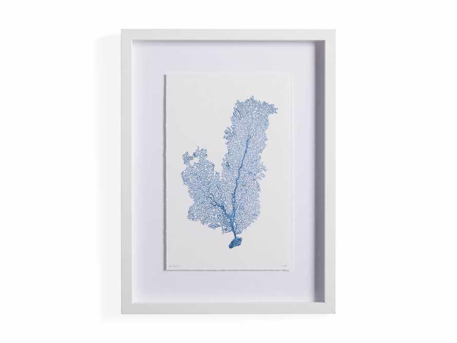 Blue Sea Fan III Print, slide 4 of 4