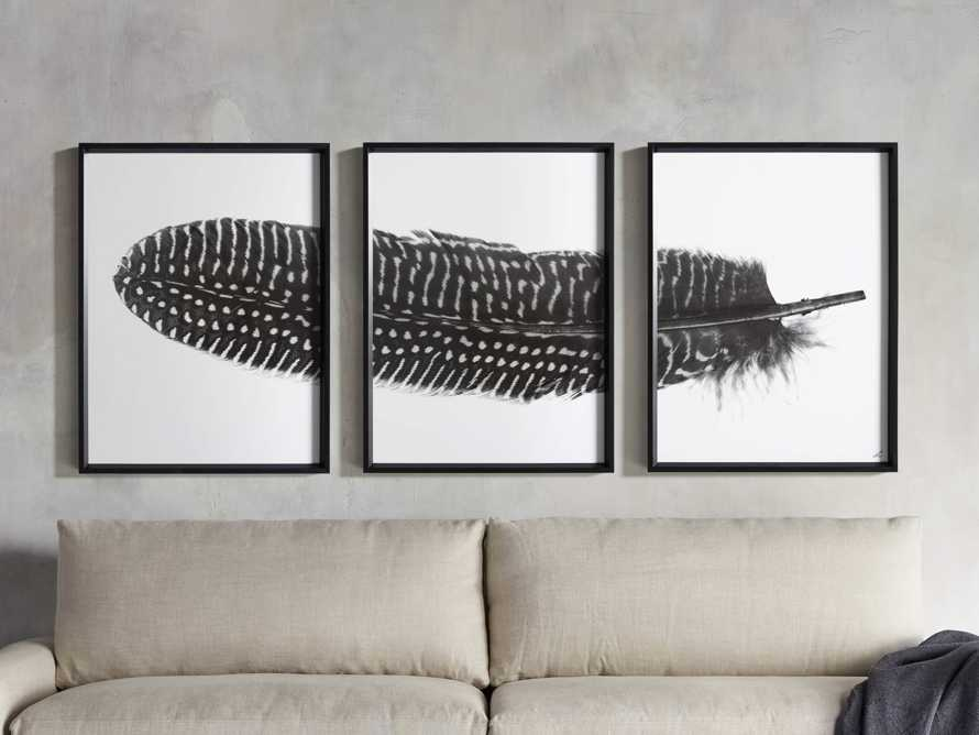 Pheasant Feather Triptych Framed Print, slide 1 of 11