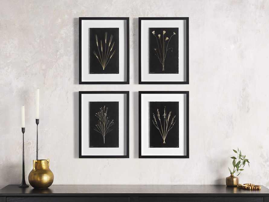 Golden Queen Anne's Lace Framed Print, slide 4 of 5