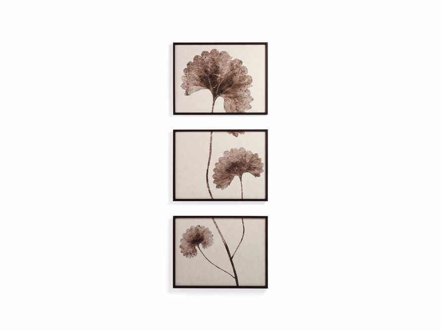 Botanical Triptych, slide 2 of 5