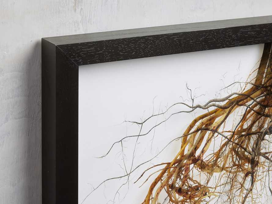 Roots Framed Print, slide 2 of 4
