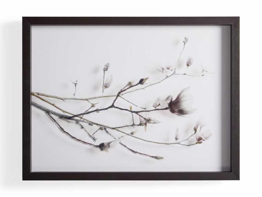 Magnolia Blossoms Framed Print, slide 5 of 5