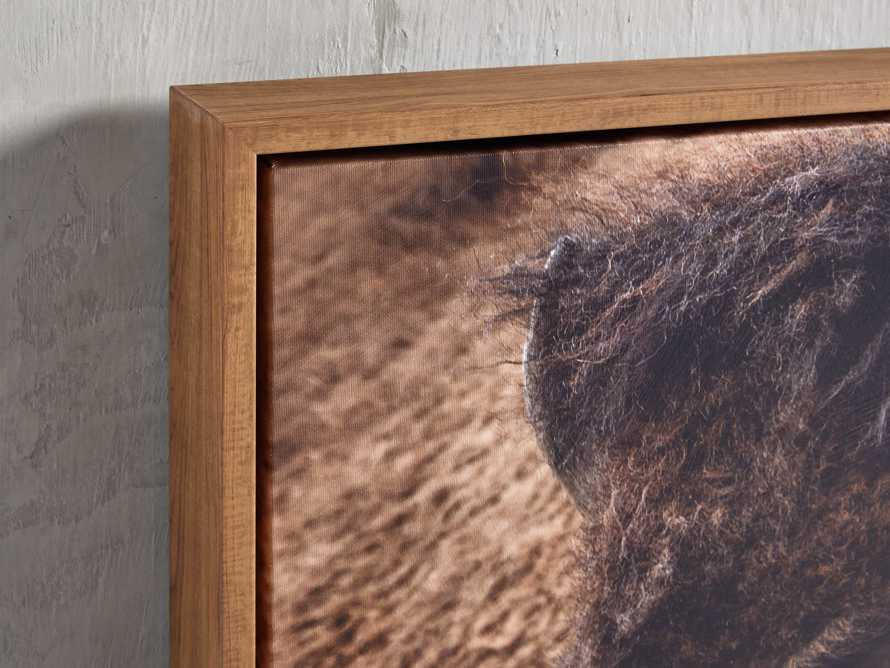 Bison Plains Framed Print, slide 2 of 4