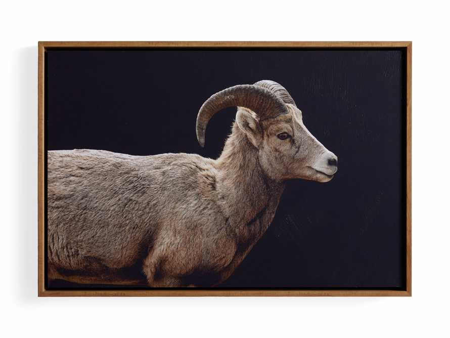 Ram Framed Print, slide 4 of 4