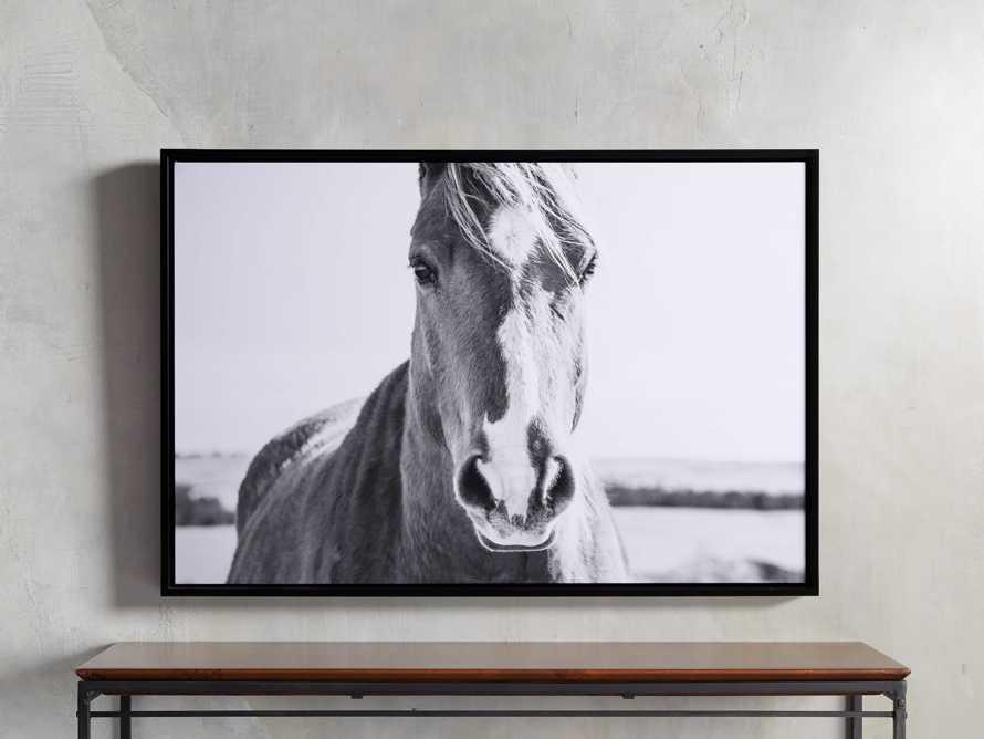 Caballo Framed Print, slide 1 of 3