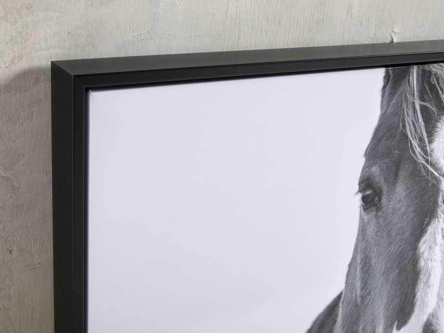 Caballo Framed Print, slide 2 of 3